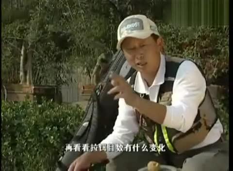 手竿钓鱼技巧视频 无钩调漂法