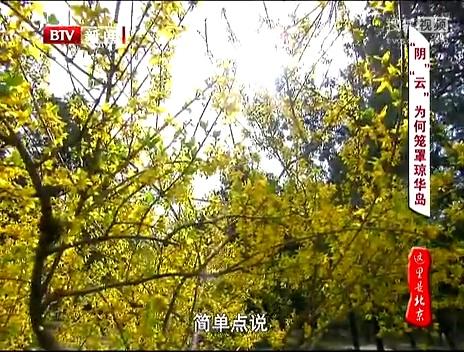 这里是北京2013(下)