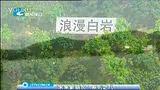未来新丽水:水上娱乐城浪漫白岩(FOR 公共主页我爱丽水)