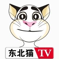 东北猫传媒