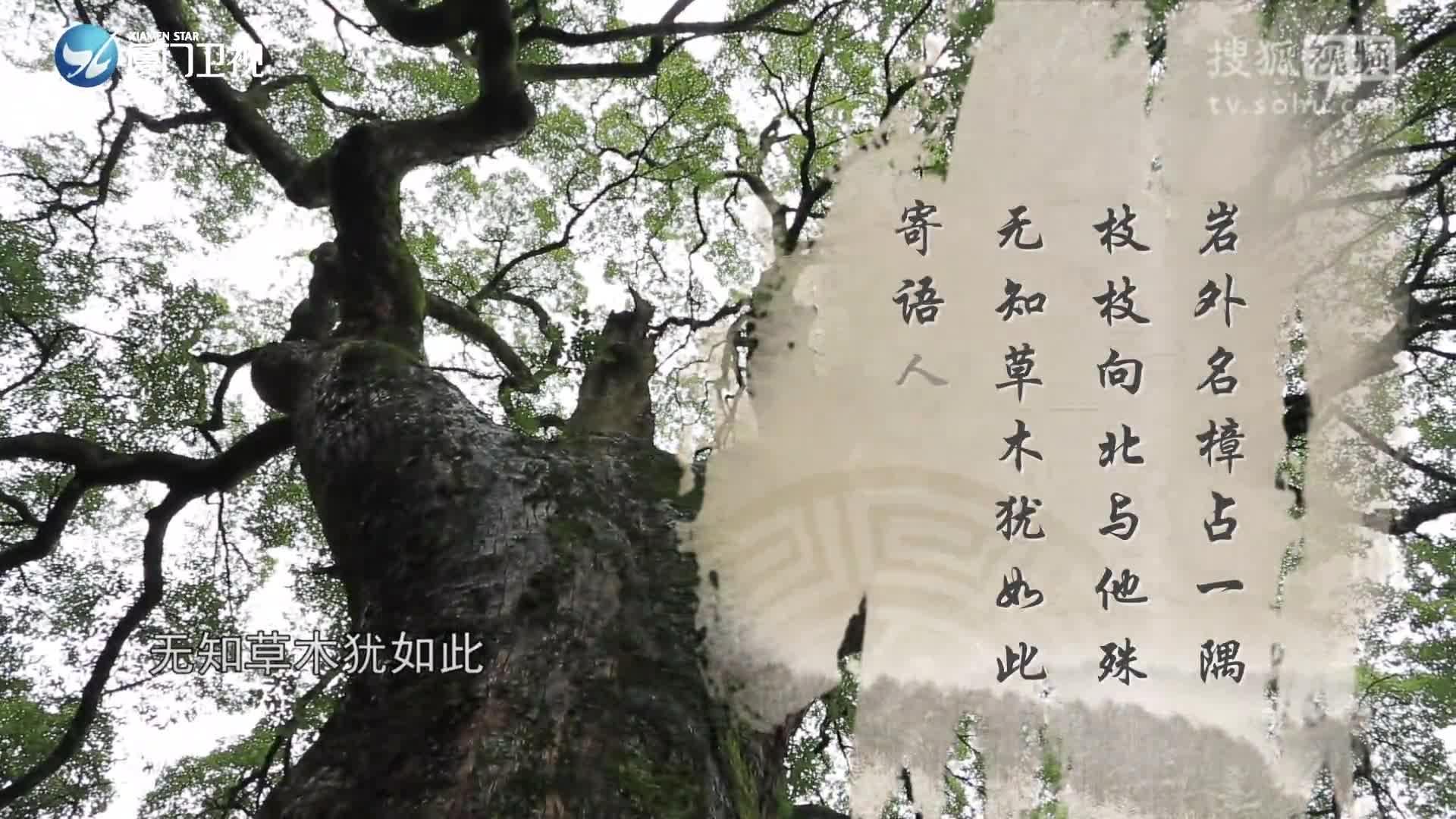 清水岩--闽南通第六十五期